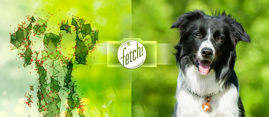Imagen promocional de Fetch!