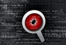 Lupa mostrando una cucaracha dentro del código